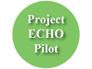 Project ECHO Pilot Button